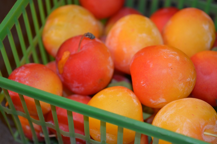 Fresh yellow plums small